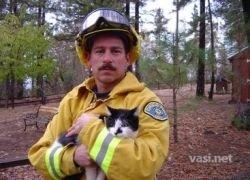 Пожарники и спасенные коты