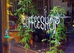 В Нидерландах закрывают кофешопы