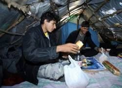 Французские власти начали зачистку лагерей мигрантов в порту Кале