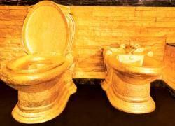 Самый дорогой туалет в мире закрыт для посетителей