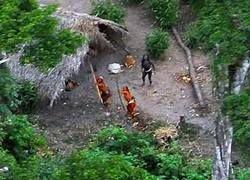 В джунглях Амазонки найдено нацистское захоронение