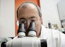 Политики разрешили ученым создавать гибриды людей и зверей