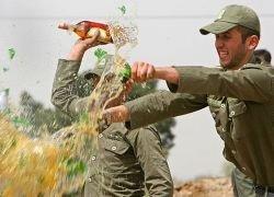 Как в Иране борются с зеленым змием?