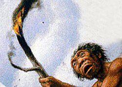 Человек научился добывать огонь 790 тысяч лет назад