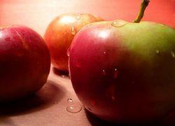 Вся правда о яблоках
