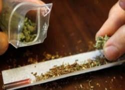 """В Голландии в марихуану начали добавлять \""""виагру\"""""""