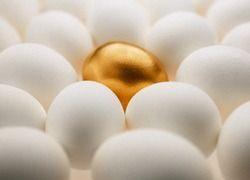 Финансовый кризис не обойдет стороной продовольственный рынок