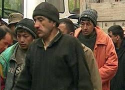 Безработные гастарбайтеры в России грабят более удачливых земляков