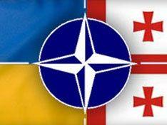 Бельгия намерена блокировать вступление Грузии и Украины в НАТО