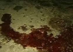 """Избиение журналиста Бекетова пытаются объяснить \""""бытовухой\"""""""