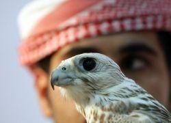 Невероятное великолепие Дубаи и ОАЭ