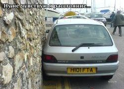 Короли парковки 2008 года