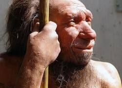 Неандертальцев истребили представители Homo sapiens?