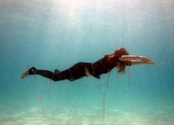 Подводные фотографии Джеймса Купера