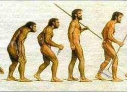 Люди больше не развиваются?