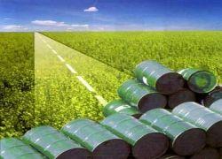 Нефтяников оштрафовали за дорогой бензин