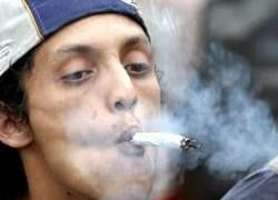 Британские ученые против переоценки опасности марихуаны