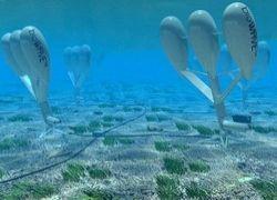 Энергию человечеству дадут подводные электростанции