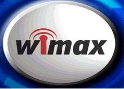 WiMax демонстрирует рекорды роста