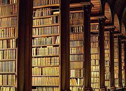 На Украине собираются изъять из библиотек всю советскую литературу