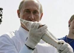 Аквакультура в России: шаг к процветанию, который никто не делает