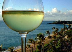 Вино из салака: напитки из экзотических фруктов