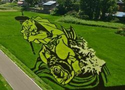 Фермеры деревни Inakadate создают картины на рисовых полях