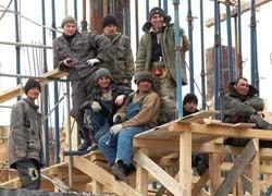 Создается комитет по оказанию помощи трудовым мигрантам