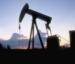 Большинство членов ОПЕК выступили за сокращение добычи нефти