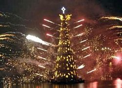 В Рио зажгла огни самая большая в мире плавучая рождественская елка