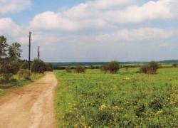 Девелоперы обещают распродать землю в Подмосковье за полцены