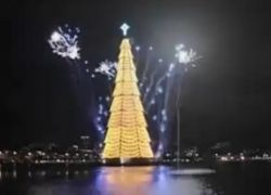 В Бразилии зажглась гигантская плавучая елка
