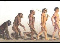 За доказательство эволюции предлагают $7,5 триллионов