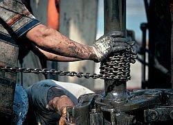 Экспорт нефти из России резко сократился