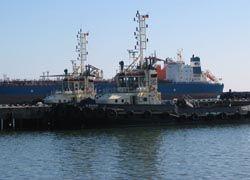 Арабы купили порт в Грузии