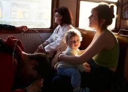 Что надо знать о попутчиках, чтобы путешествовать с комфортом