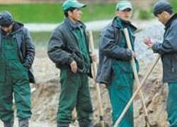 Квоту на иностранных рабочих в России сократят в два раза
