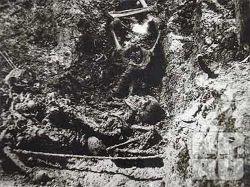 Скелет Николая Второго был под арестом в КГБ