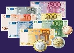 Дворник может получить $15000, если склеит найденные банкноты