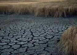 От дефицита пресной воды спасут засоленные территории