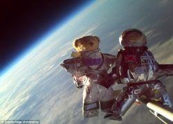 Первые мягкие игрушки в открытом космосе