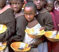 Мировой финансовый кризис позволил справиться с продовольственным?