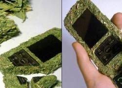Экология в телефоне: представлен гаджет из прессованного сена