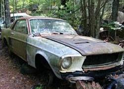 В американском лесу нашли огромную свалку раритетных автомобилей