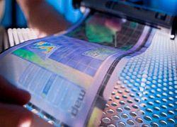 HP разработала бюджетный эластичный дисплей