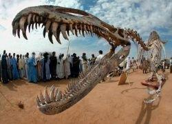 Археологические раскопки в Сахаре
