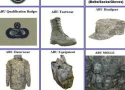 Интернет-магазин обманул американских военных на 19 тысяч долларов
