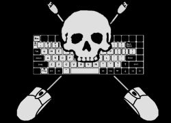 Продавец пиратского софта угодил за решетку