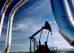 """Запасы США \""""убивают\"""" цены на нефть"""
