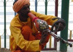 В Индии бастуют заклинатели змей